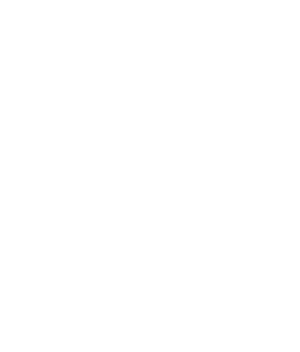 Birkdale Publishers Icon